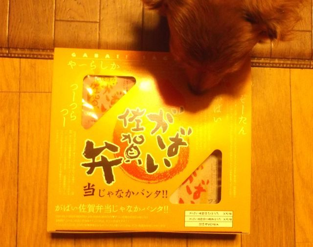 omiyage-0330-2.jpg